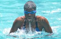Dolphins impress at swimming gala