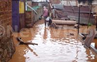 Saturday morning rains devastate Entebbe Road residents