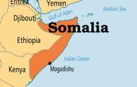 Somali governor killed in Al-Shabaab suicide blast