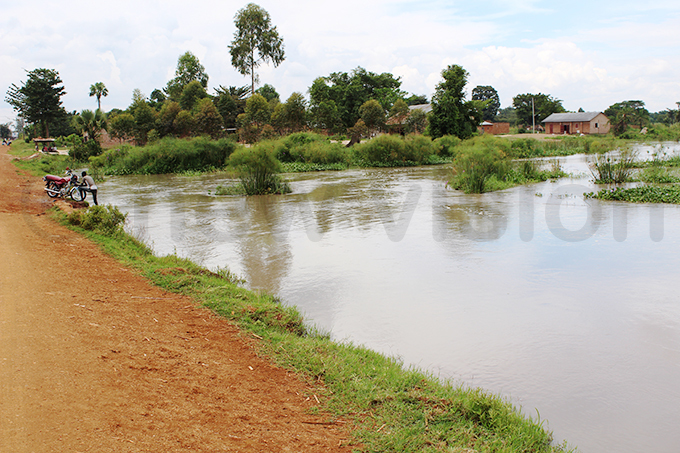 ome parts of ahindu village azimasa subcounty remain flooded hoto by eorge ita
