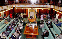 Hepatitis B fight: Parliament pushes for increased funding