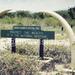 Eleven lions 'poisoned in Queen Elizabeth National Park