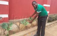 Luganda has cut costs by growing vegetables in his backyard