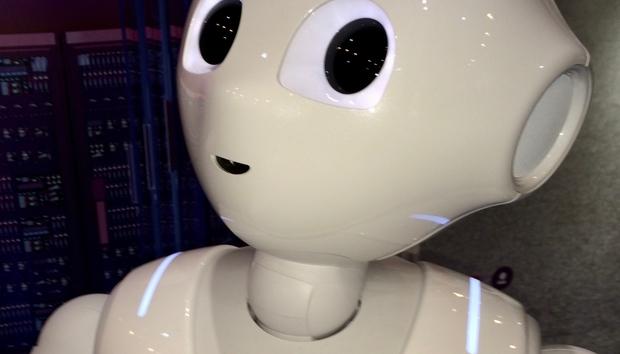 pepperrobot100728094orig
