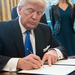 Travellers so far blocked by Trump travel clampdown