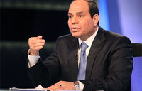 Egypt: ex-army chief wins presidential election