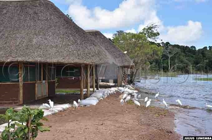 ccommodation facilities at the sanctuary can no longer be occupied due to ravaging waters and strong waves