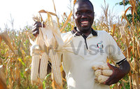 Grain traders ask for support across the value chain