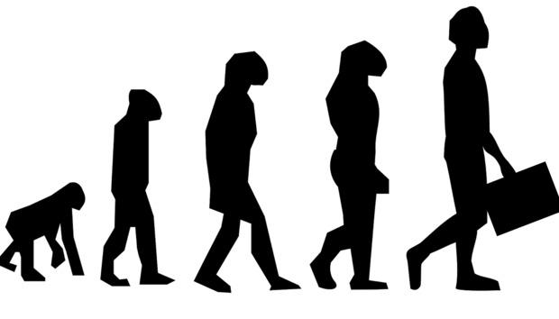 evolution100636596orig