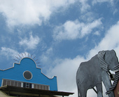 elephant-cloud