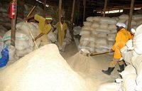 In Harvest Money:Ssentamu reaps big from feed mill