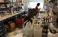 Progress toward less toxic tools to fight cancer