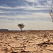 African Union labels climate change a security threat