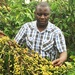 COVID-19: Coffee farmers urged to form groups to access market