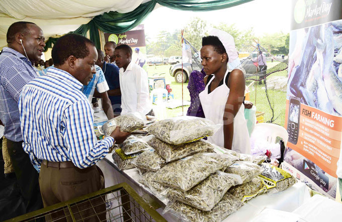 eople buy packed silver fish from iyindi omens group during the orld ank pen day