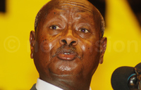 President Museveni wants local languages preserved
