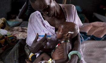 Malnutritioninsert 350x210