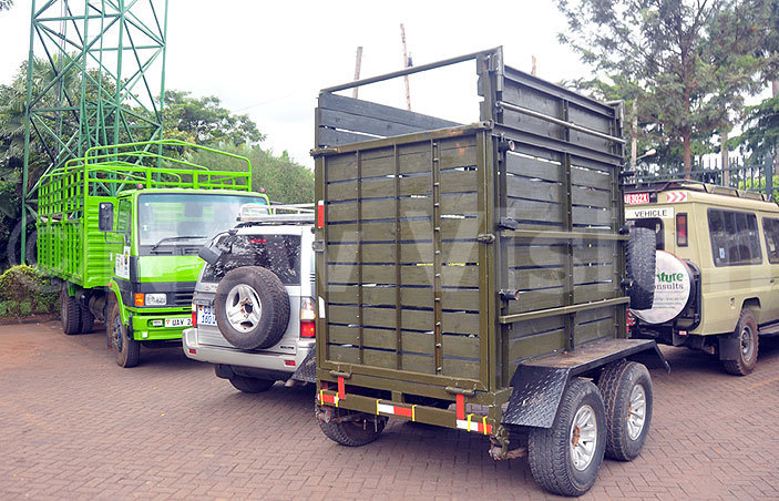 cart that will be used in translocating the giraffes to the ata lorry redit enis ibele